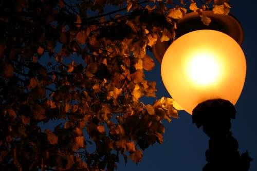 Herbstlaub_Laterne_02