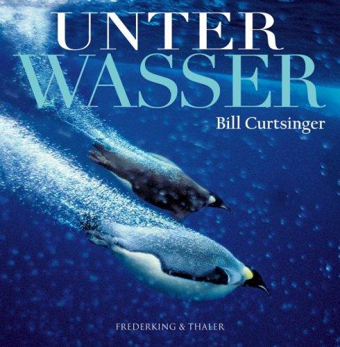 Bill Curtsinger: Unter Wasser