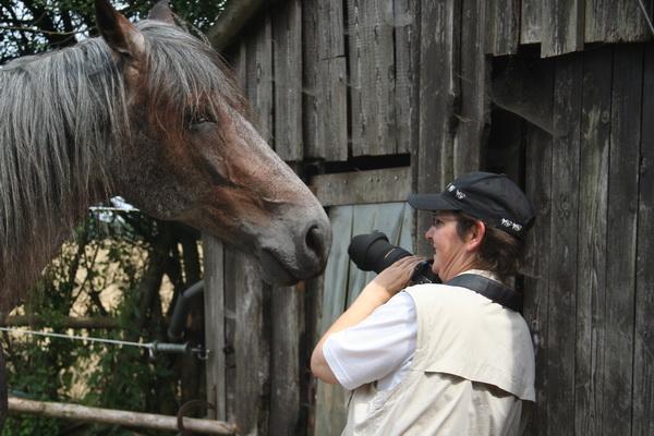 Pferdografin Martina bei der Arbeit