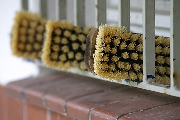 Bürsten für die Reinigung - Foto: © Martina Berg