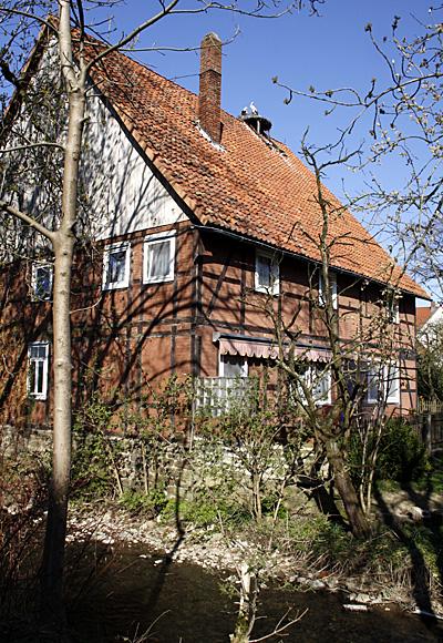 Fachwerkhaus mit Storchennest - Foto: © Martina Berg