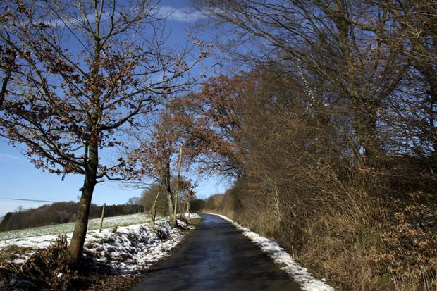 Weg zum Siekbachtal - Foto: © Martina Berg
