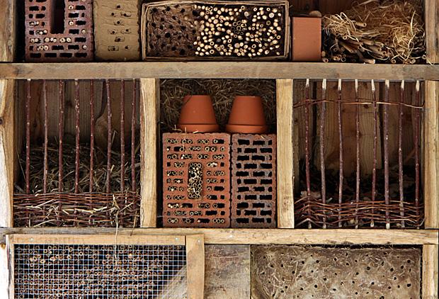 Insektenhotel - Foto: © Martina Berg