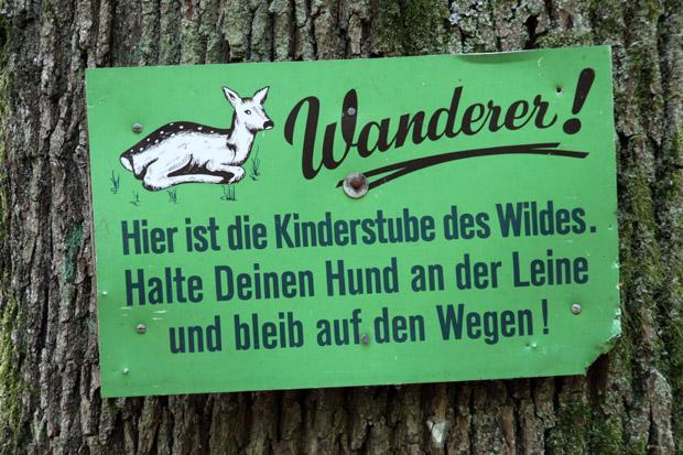 Hinweisschild im Wald - Foto: © Martina Berg
