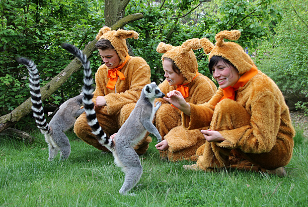 Foto: © Zoo Dresden